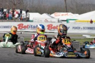 positive results for crg official team at the first event of the wsk euro series on the track of sarno