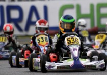 the leaders of the wsk super master series standings are lammers nl fk parilla kz2 basz pl tony vortex kf ticktum gb zanardi parilla kfj and szyszko pl tony lke k60mini