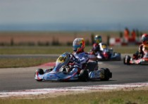 at the european cik fia champs zuera joyner zanardi parilla ok watt tony kart vortex okj and hajek kosmic vortex kz did the best performance
