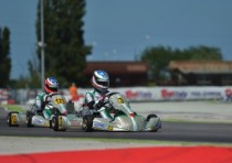final round of the wsk super master series at adria the pole sitters after the qualifying are ardigo tony kart vortex kz celenta formulak tm kz2 basz pl kosmic vortex ok and hauger n crg parilla okj