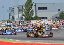 the wsk super master series at its final round adria ardigo tony kart vortex kz tornqvist s crg tm kz2 basz pl kosmic vortex ok collet br birelart parilla okj and gomez crg tm k60mini lead their categories